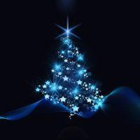 Karower Dachse,Weihnachtsbaum Handball